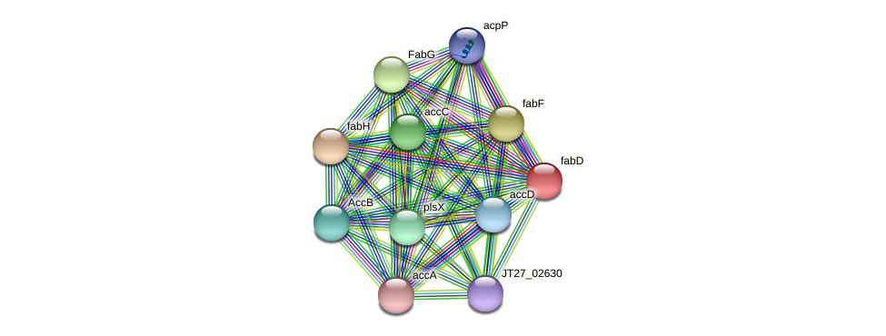 JT27_16275 protein (Alcaligenes faecalis) - STRING interaction network
