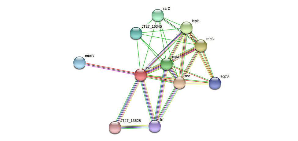 era protein (Alcaligenes faecalis) - STRING interaction network