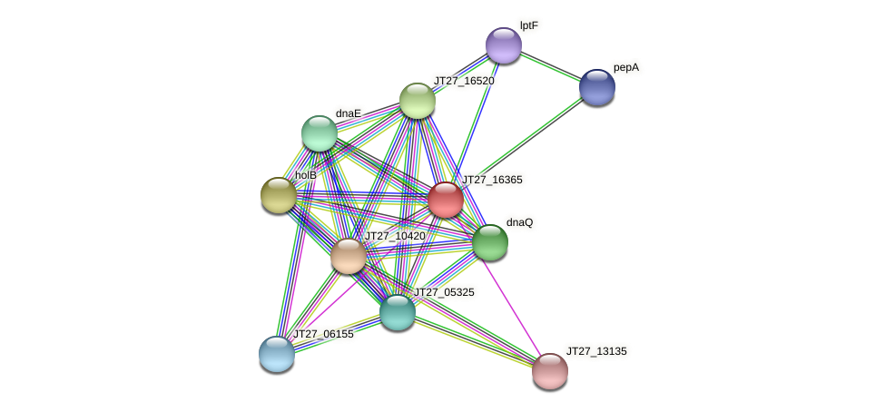 JT27_16365 protein (Alcaligenes faecalis) - STRING interaction network