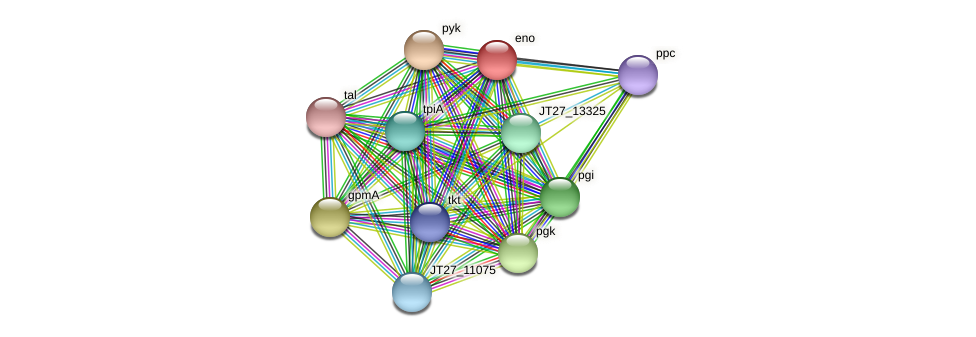 eno protein (Alcaligenes faecalis) - STRING interaction network
