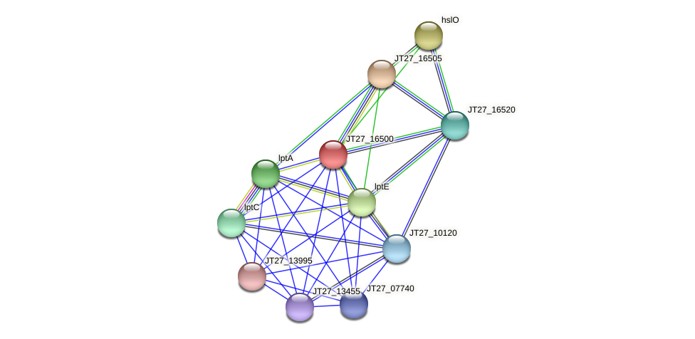 JT27_16500 protein (Alcaligenes faecalis) - STRING interaction network
