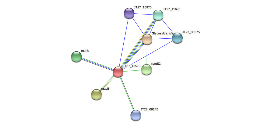 JT27_16570 protein (Alcaligenes faecalis) - STRING interaction network