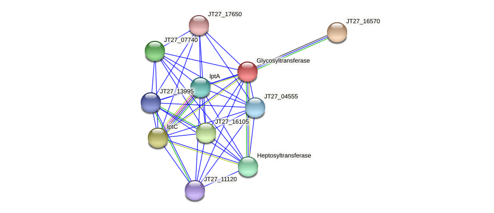 JT27_16575 protein (Alcaligenes faecalis) - STRING interaction network