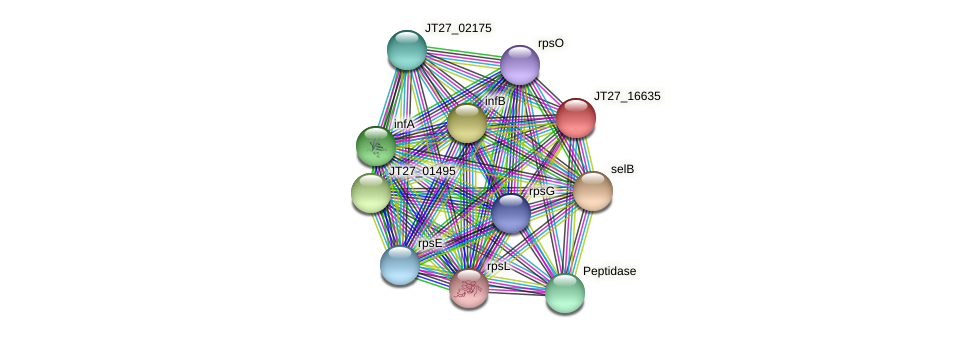 JT27_16635 protein (Alcaligenes faecalis) - STRING interaction network
