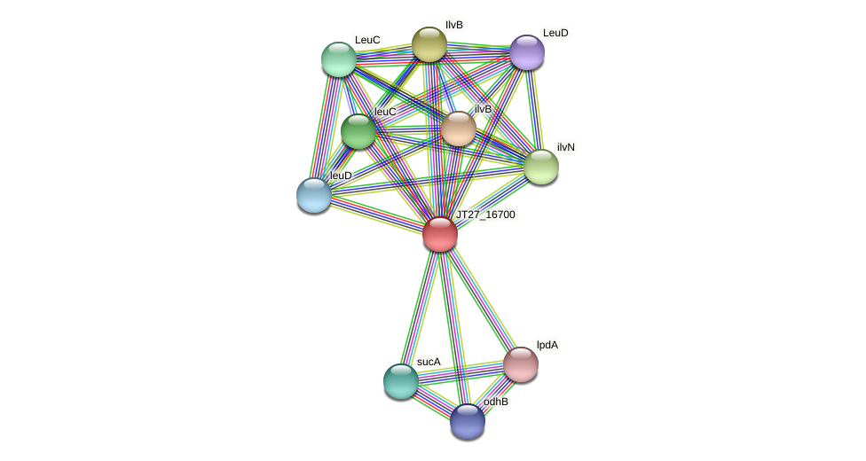 JT27_16700 protein (Alcaligenes faecalis) - STRING interaction network