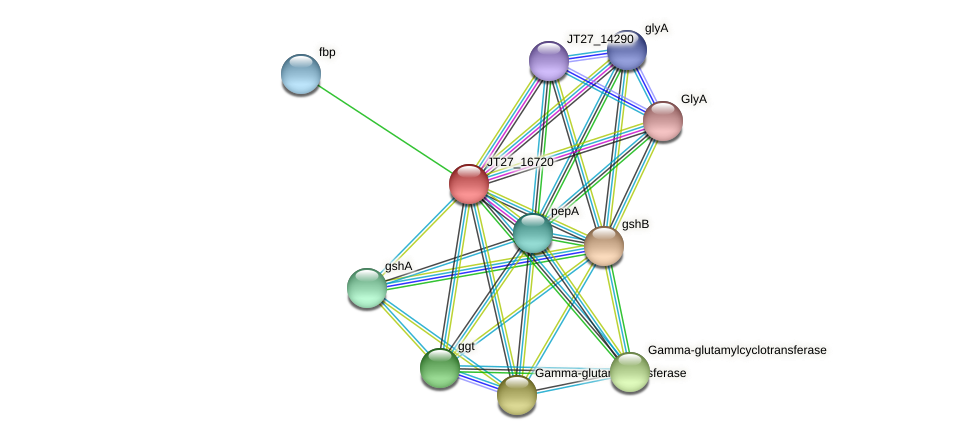 JT27_16720 protein (Alcaligenes faecalis) - STRING interaction network