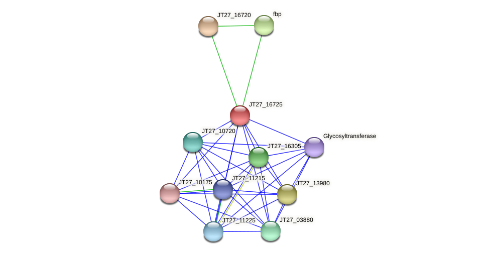 JT27_16725 protein (Alcaligenes faecalis) - STRING interaction network