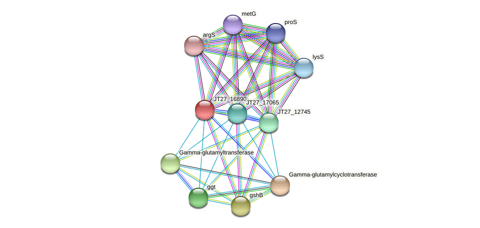 JT27_16890 protein (Alcaligenes faecalis) - STRING interaction network