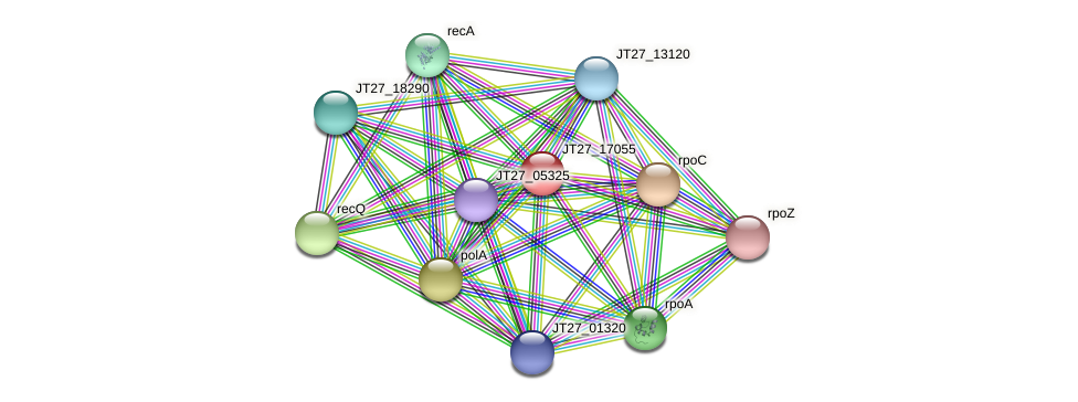 JT27_17055 protein (Alcaligenes faecalis) - STRING interaction network