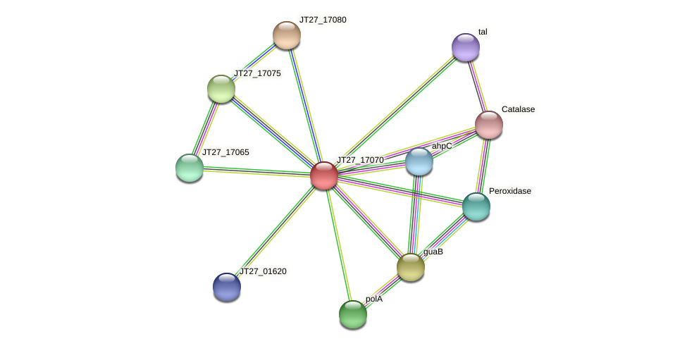 JT27_17070 protein (Alcaligenes faecalis) - STRING interaction network