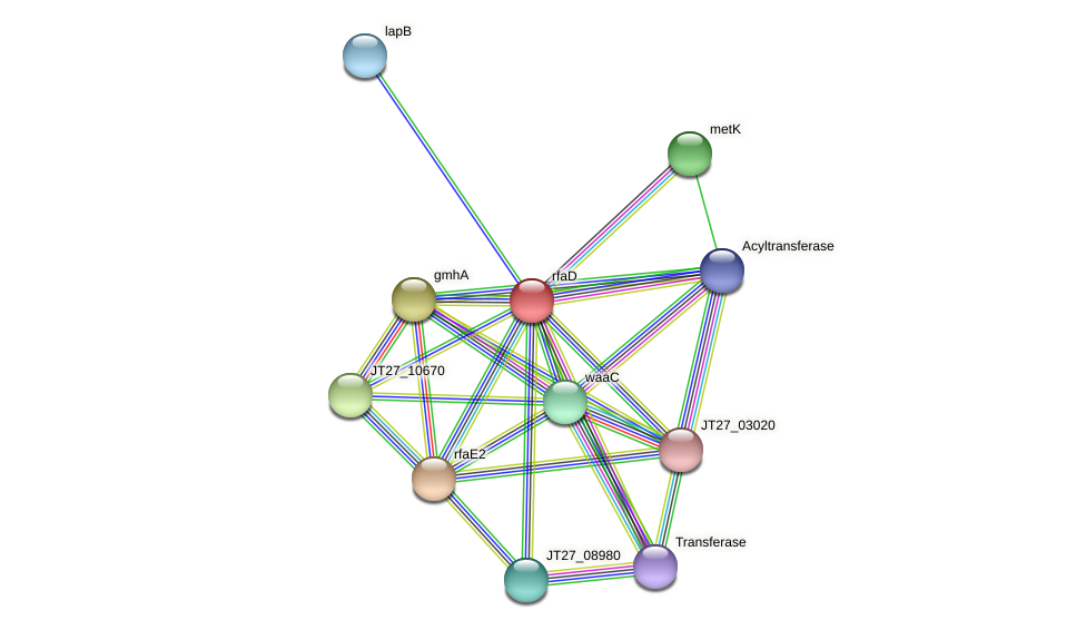 hldD protein (Alcaligenes faecalis) - STRING interaction network
