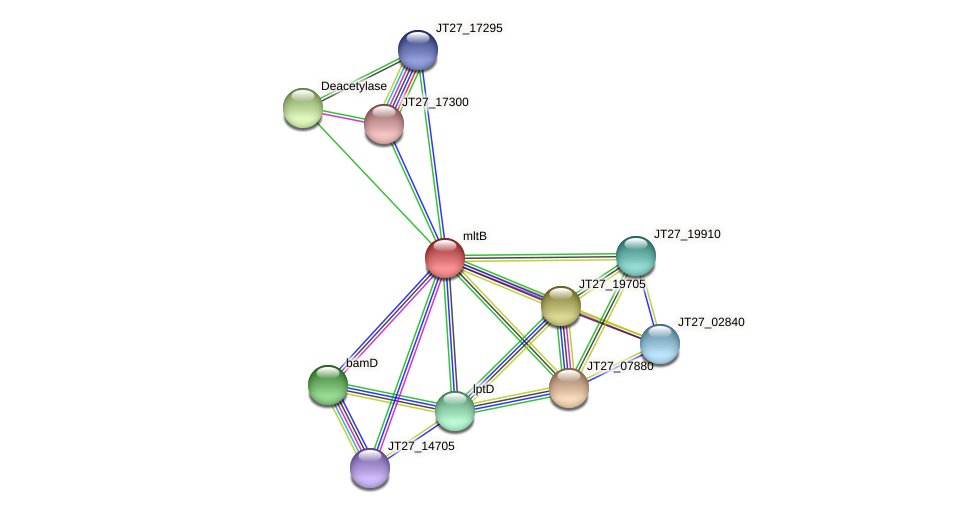JT27_17285 protein (Alcaligenes faecalis) - STRING interaction network