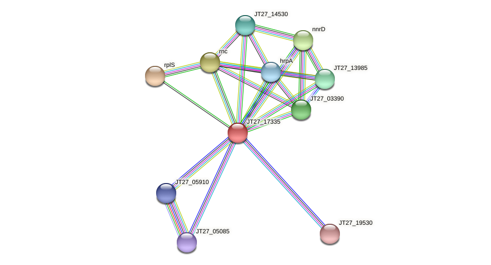 JT27_17335 protein (Alcaligenes faecalis) - STRING interaction network