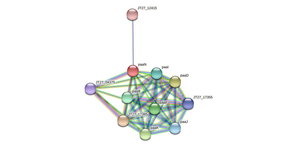 JT27_17380 protein (Alcaligenes faecalis) - STRING interaction network