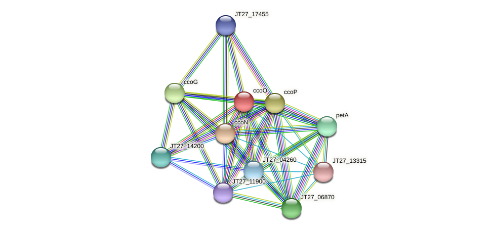 JT27_17450 protein (Alcaligenes faecalis) - STRING interaction network