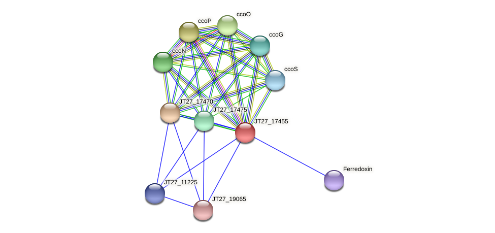 JT27_17455 protein (Alcaligenes faecalis) - STRING interaction network