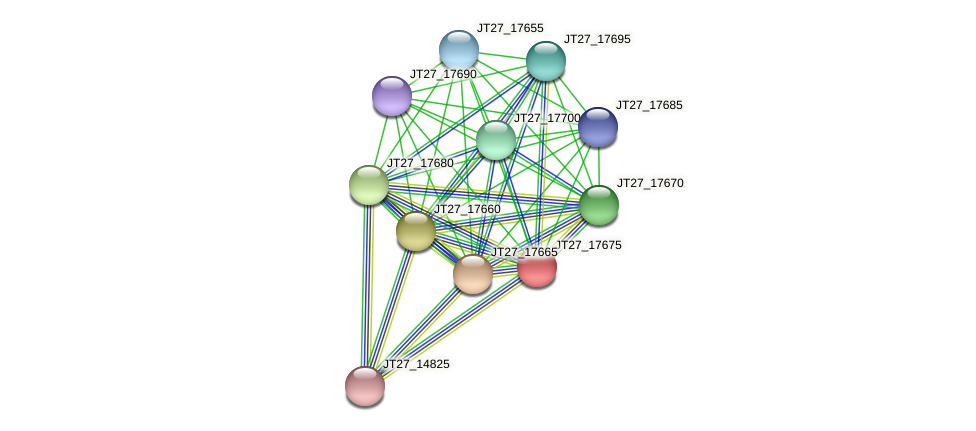 JT27_17675 protein (Alcaligenes faecalis) - STRING interaction network