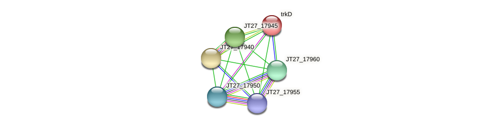 trkD protein (Alcaligenes faecalis) - STRING interaction network