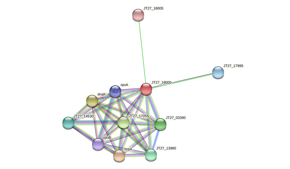 JT27_18000 protein (Alcaligenes faecalis) - STRING interaction network