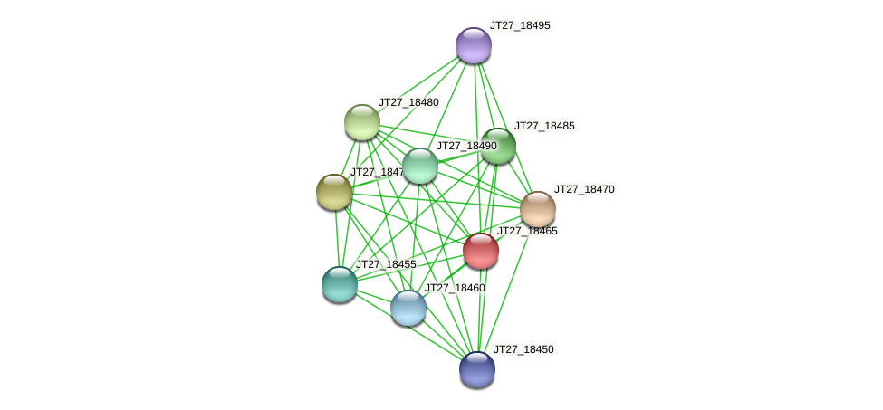 JT27_18465 protein (Alcaligenes faecalis) - STRING interaction network