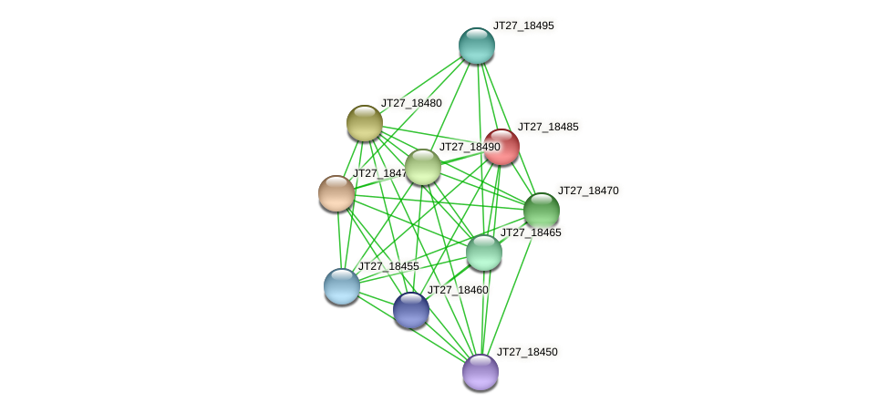 JT27_18485 protein (Alcaligenes faecalis) - STRING interaction network