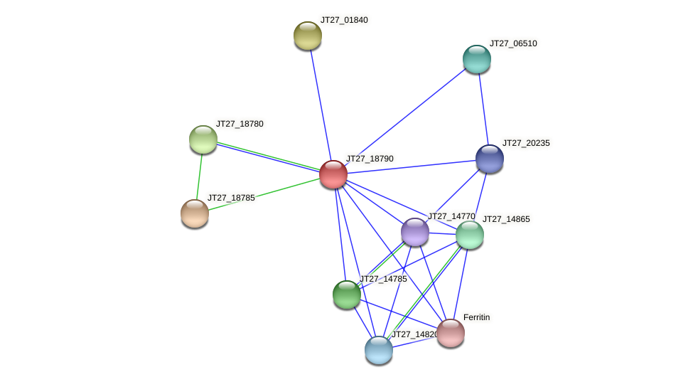 JT27_18790 protein (Alcaligenes faecalis) - STRING interaction network