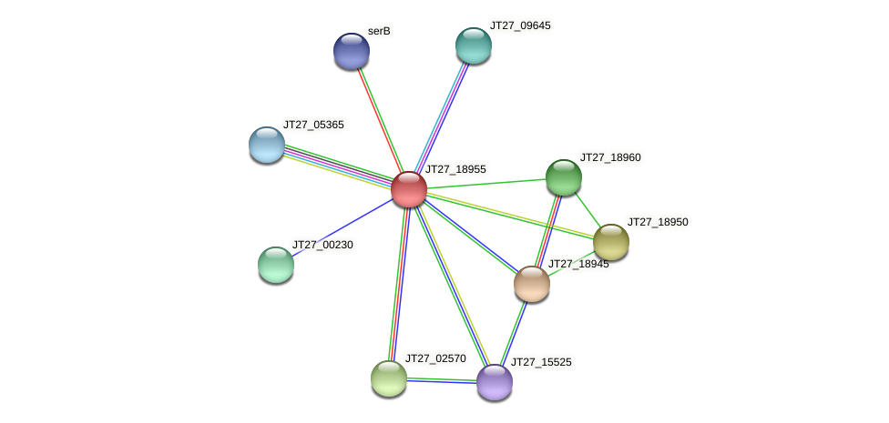 JT27_18955 protein (Alcaligenes faecalis) - STRING interaction network