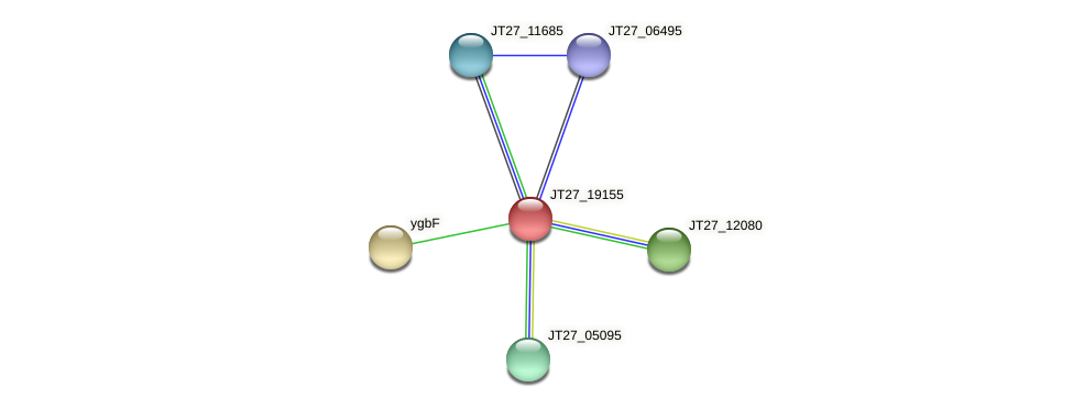 JT27_19155 protein (Alcaligenes faecalis) - STRING interaction network
