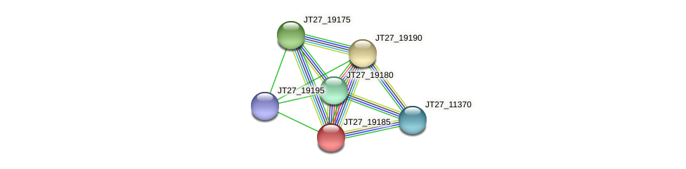 JT27_19185 protein (Alcaligenes faecalis) - STRING interaction network
