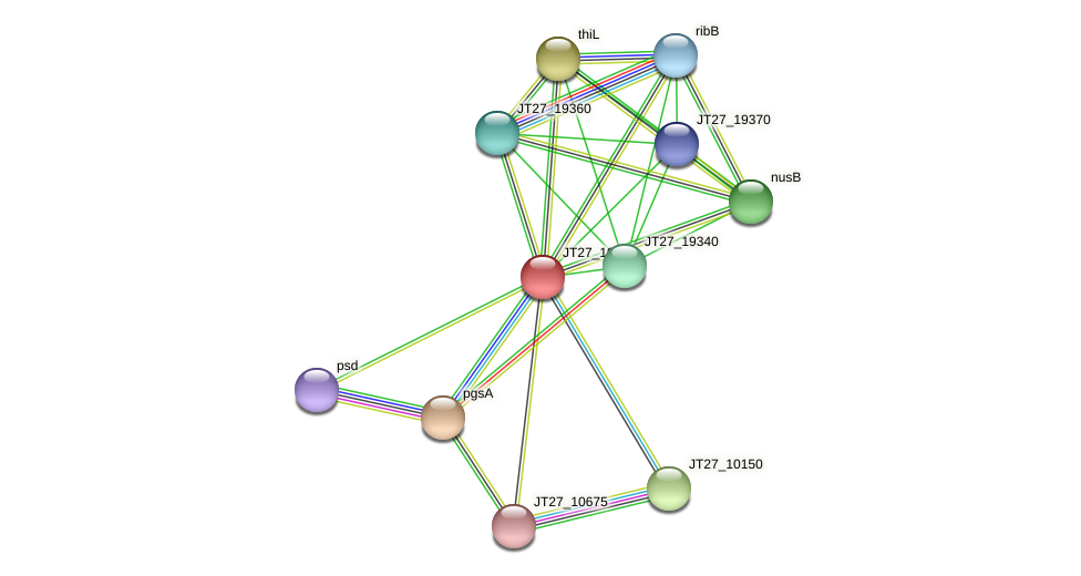 JT27_19345 protein (Alcaligenes faecalis) - STRING interaction network