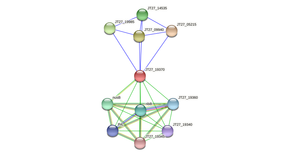 JT27_19370 protein (Alcaligenes faecalis) - STRING interaction network