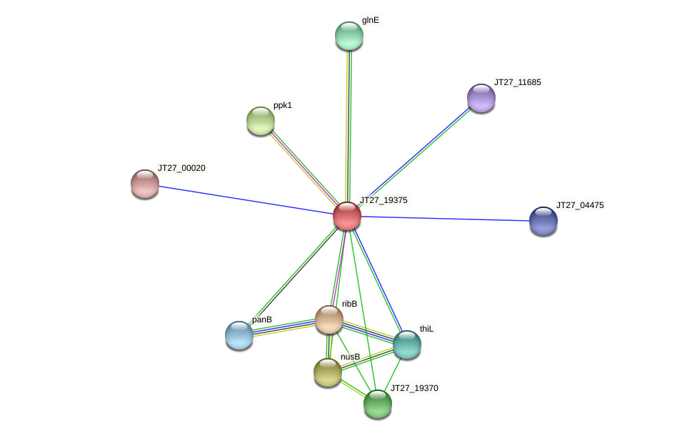 JT27_19375 protein (Alcaligenes faecalis) - STRING interaction network