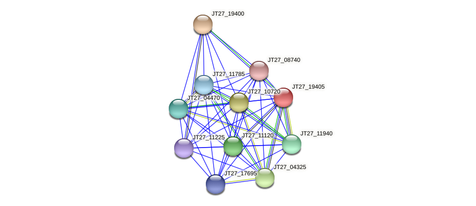 JT27_19405 protein (Alcaligenes faecalis) - STRING interaction network