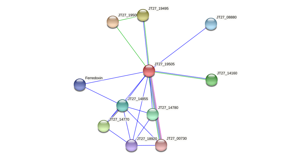 JT27_19505 protein (Alcaligenes faecalis) - STRING interaction network
