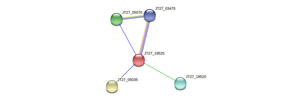 JT27_19525 protein (Alcaligenes faecalis) - STRING interaction network