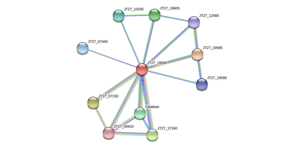 JT27_19580 protein (Alcaligenes faecalis) - STRING interaction network