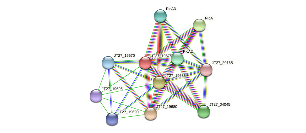 JT27_19675 protein (Alcaligenes faecalis) - STRING interaction network