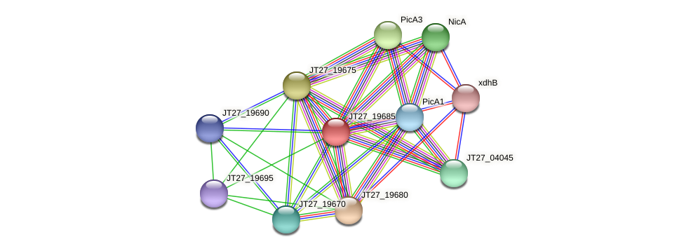 JT27_19685 protein (Alcaligenes faecalis) - STRING interaction network