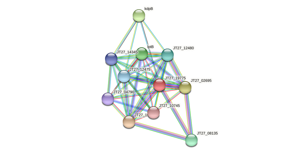 JT27_19775 protein (Alcaligenes faecalis) - STRING interaction network