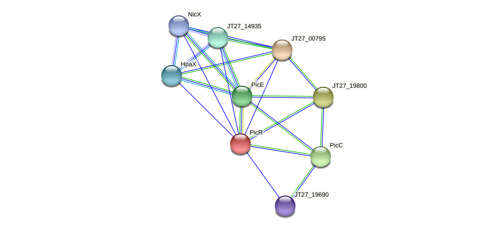 JT27_19785 protein (Alcaligenes faecalis) - STRING interaction network