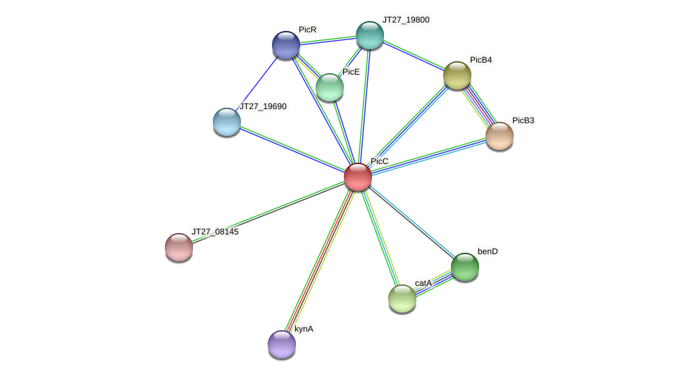 JT27_19790 protein (Alcaligenes faecalis) - STRING interaction network