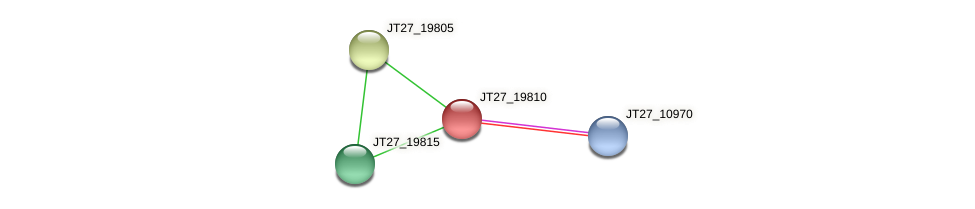 JT27_19810 protein (Alcaligenes faecalis) - STRING interaction network