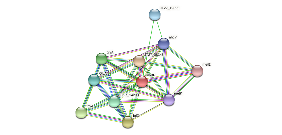 JT27_19900 protein (Alcaligenes faecalis) - STRING interaction network
