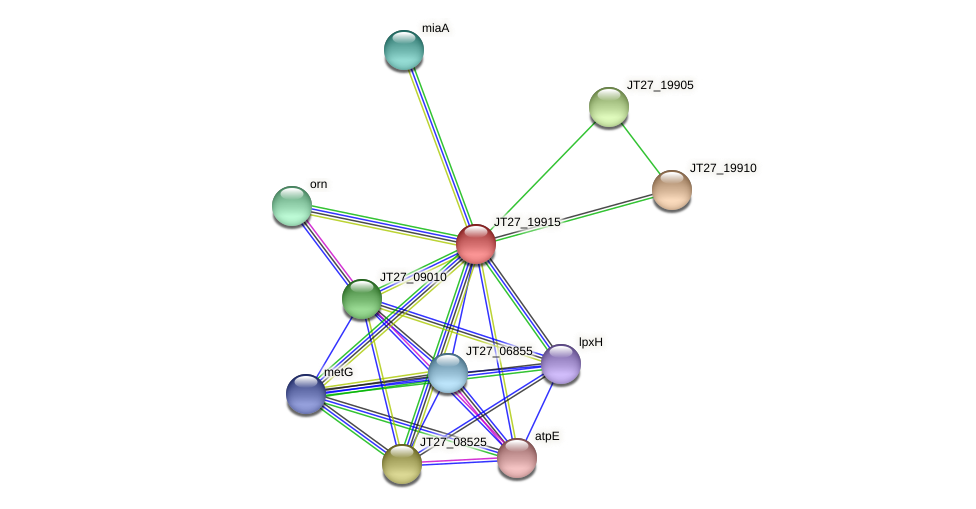 JT27_19915 protein (Alcaligenes faecalis) - STRING interaction network