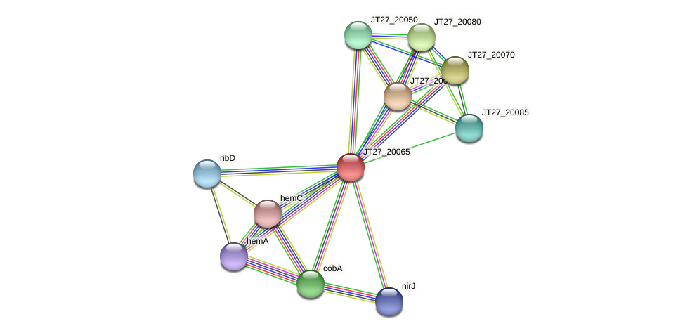 JT27_20065 protein (Alcaligenes faecalis) - STRING interaction network