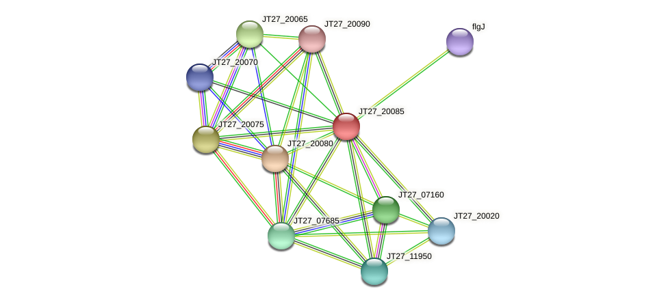 JT27_20085 protein (Alcaligenes faecalis) - STRING interaction network