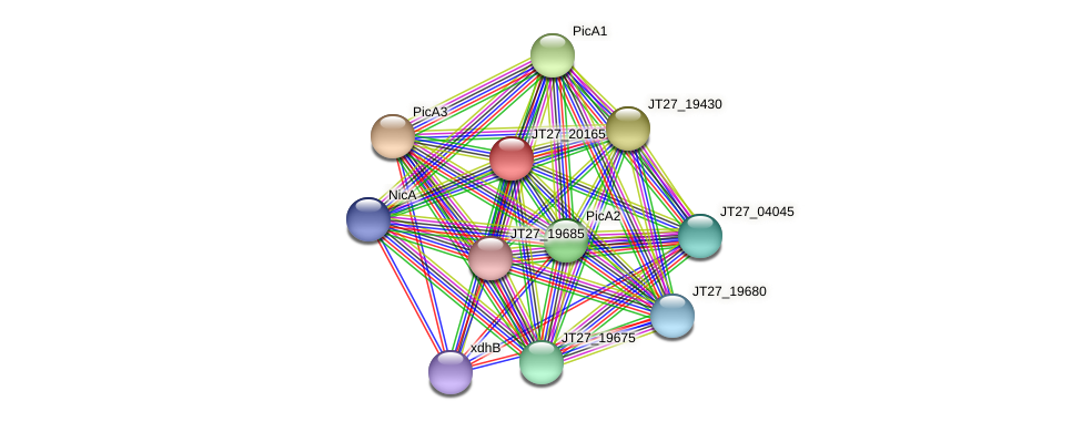 JT27_20165 protein (Alcaligenes faecalis) - STRING interaction network