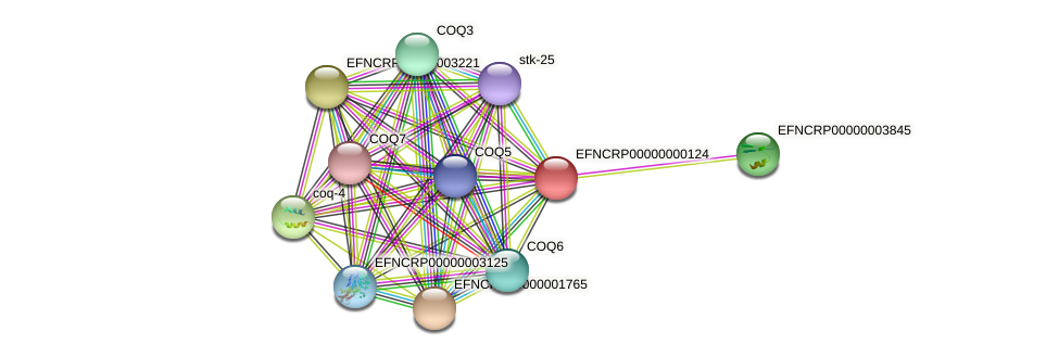 EFNCRP00000000124 protein (Neurospora crassa) - STRING interaction network