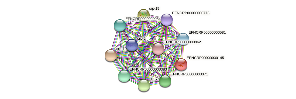 EFNCRP00000000145 protein (Neurospora crassa) - STRING interaction network