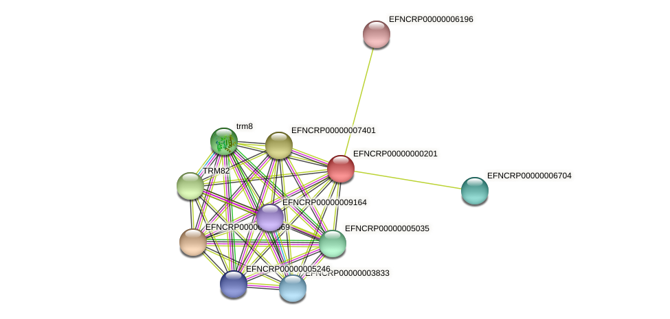 EFNCRP00000000201 protein (Neurospora crassa) - STRING interaction network